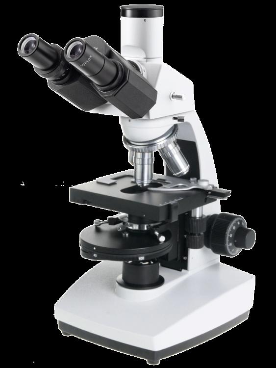 Novex Microscoop - Trinoculair - Helderveld + fasecontrast